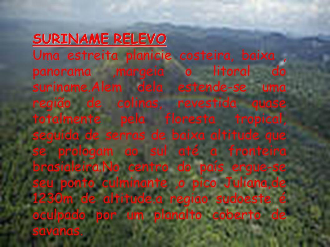 HIDROGRAFIA Sete grandes rios cruzam o país no sentido sul -norte e desemborcam no aceano atlantico:o Courantyne,que forma a fronteira com a Guiana, o Nickerie, o Coppenami, o Saramocca, o Suriname no qual se construiu a represa W.J.