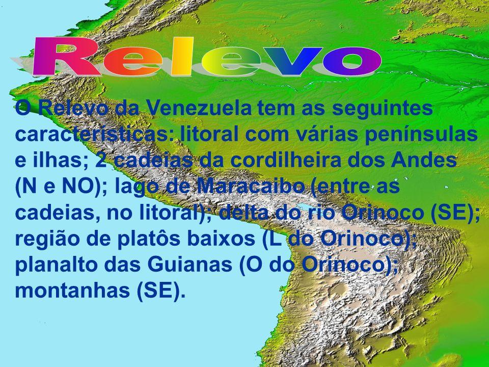 O Relevo da Venezuela tem as seguintes características: litoral com várias penínsulas e ilhas; 2 cadeias da cordilheira dos Andes (N e NO); lago de Ma