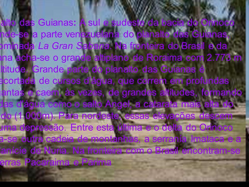 Planalto das Guianas: A sul e sudeste da bacia do Orinoco estende-se a parte venezuelana do planalto das Guianas, denominada La Gran Sabana. Na fronte