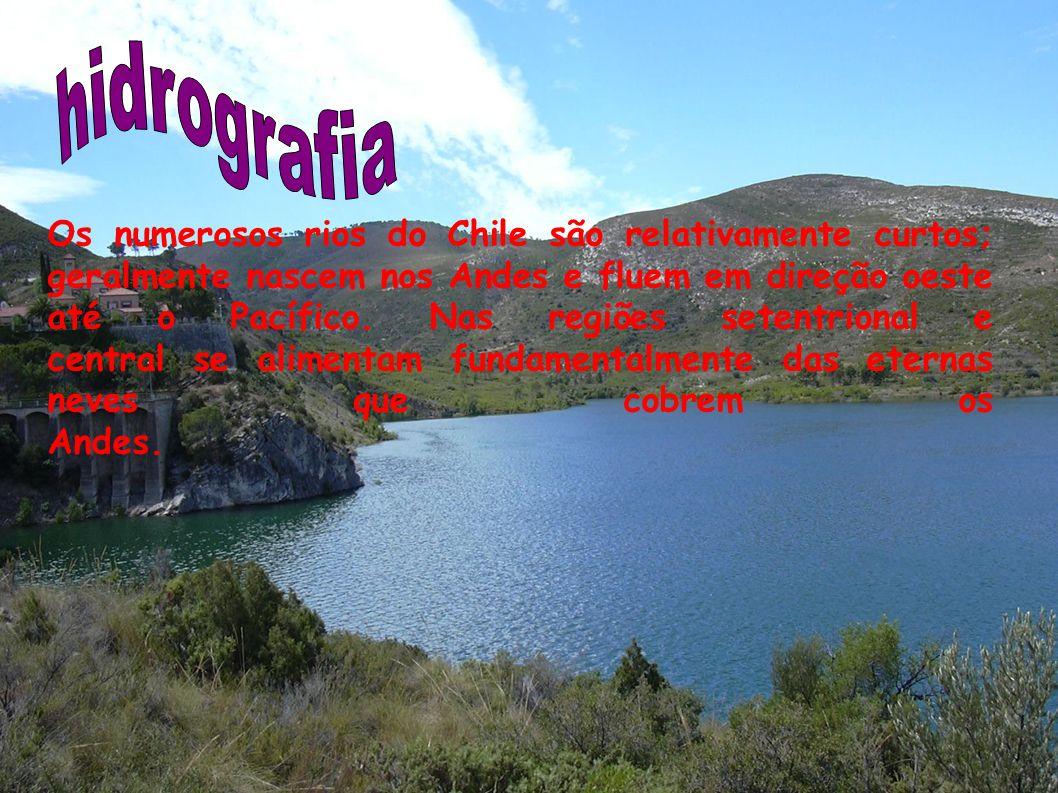Os rios mais importantes de norte a sul são: Llutua, Loa, Elqui, Limarí, Choapa, Petorca, La Ligua, Aconcagua, Maipo, Rapel, Maule, Biobío, Imperial e Toltén.
