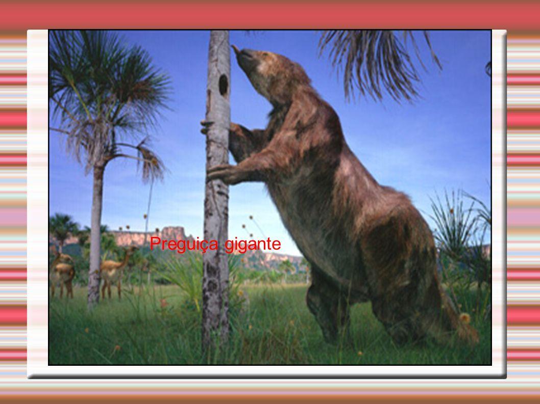 Preguiça gigante