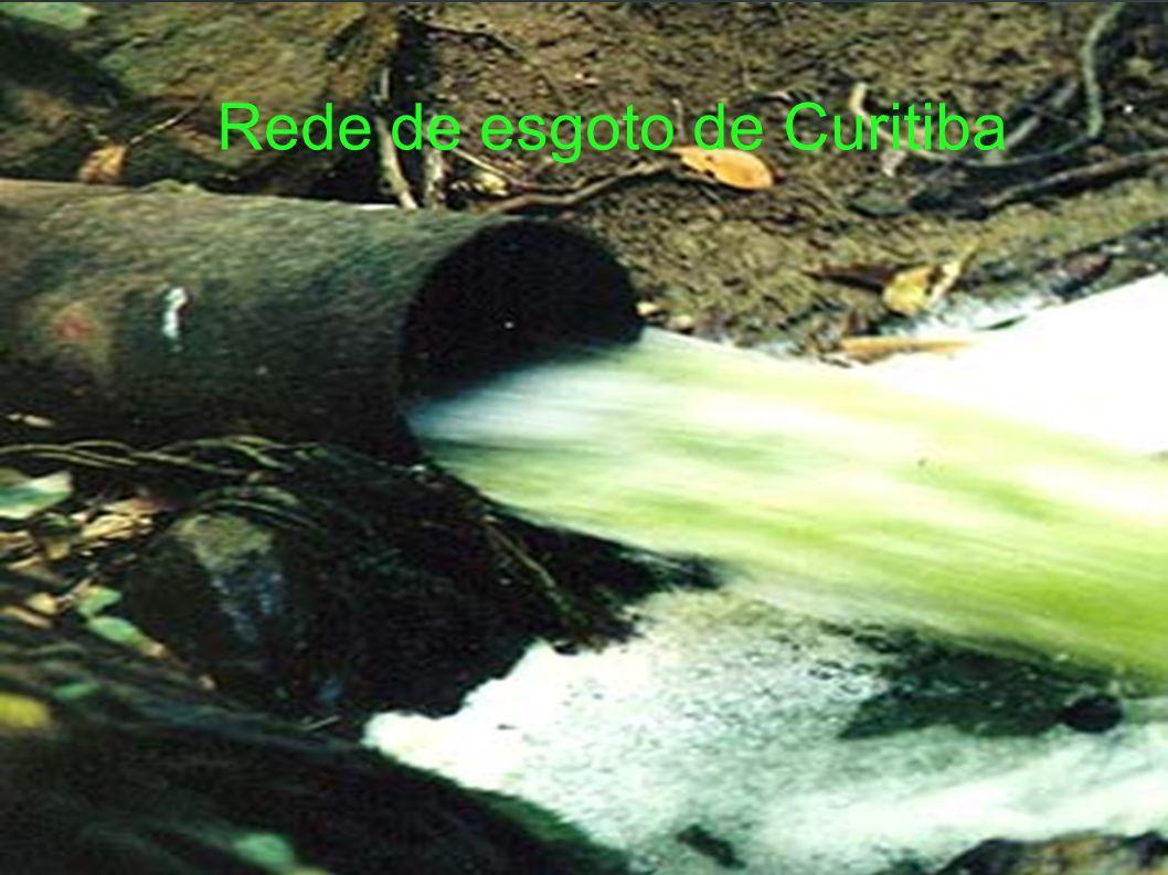 Lugares mais visitados JARDIM BOTANICO