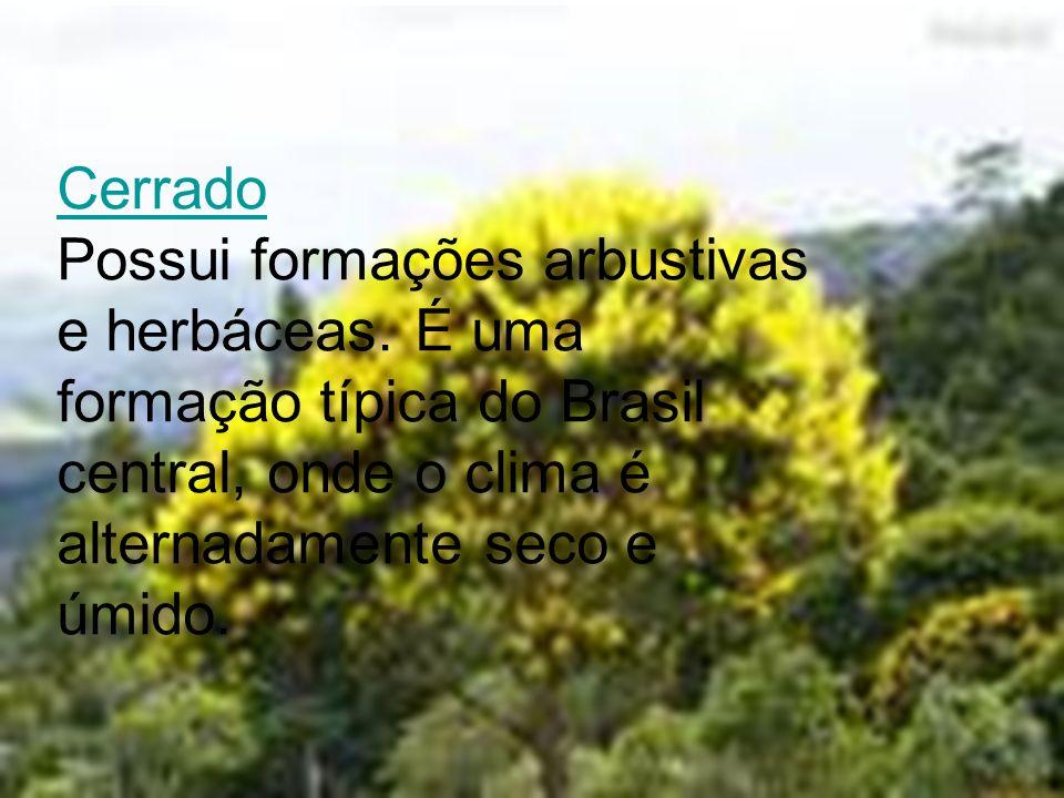 Cerrado Cerrado Possui formações arbustivas e herbáceas. É uma formação típica do Brasil central, onde o clima é alternadamente seco e úmido.