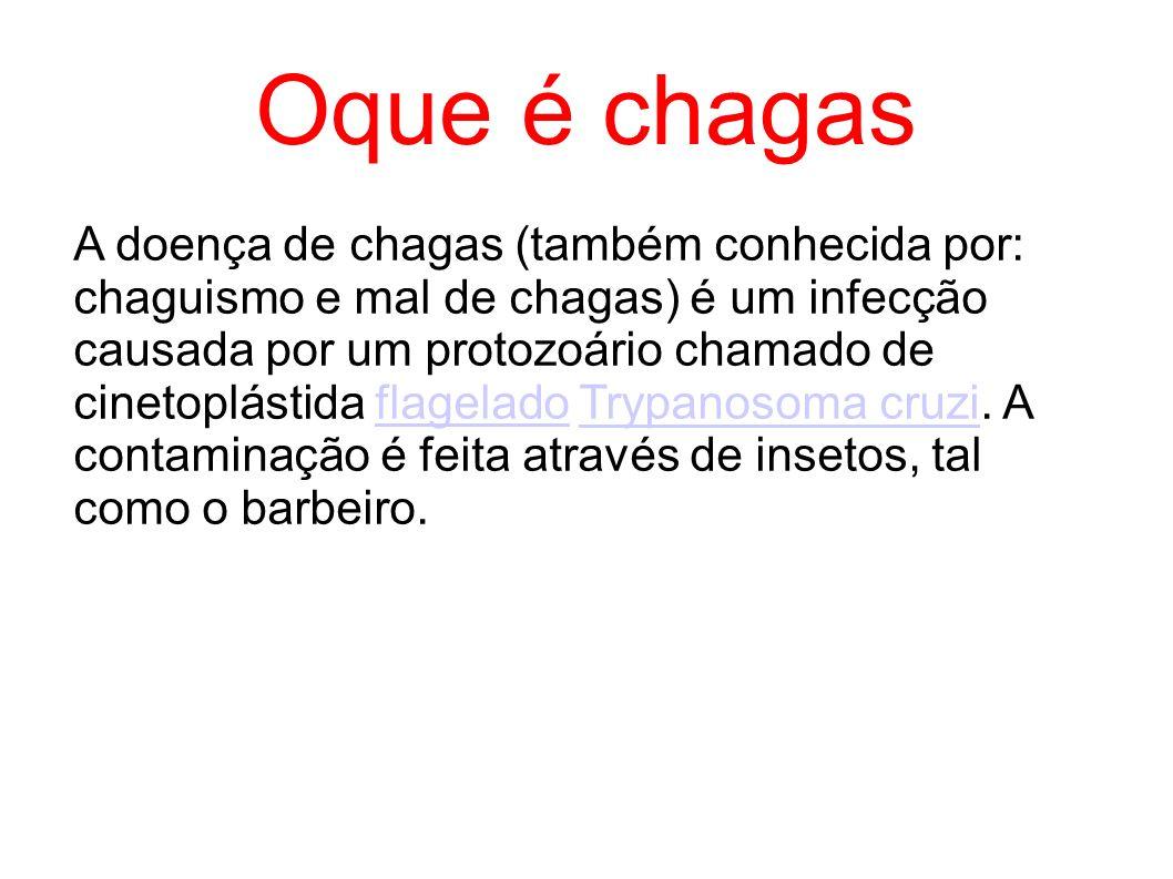 Oque é chagas A doença de chagas (também conhecida por: chaguismo e mal de chagas) é um infecção causada por um protozoário chamado de cinetoplástida