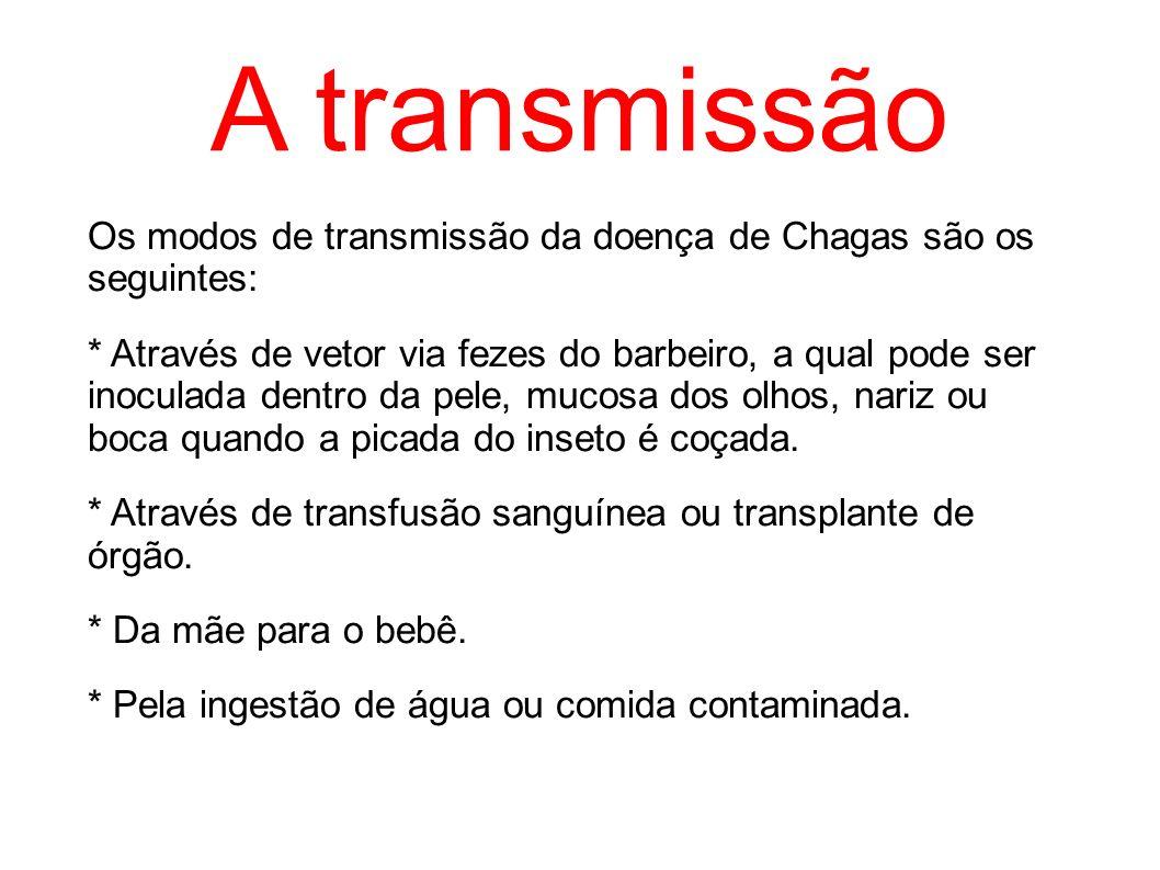 A transmissão Os modos de transmissão da doença de Chagas são os seguintes: * Através de vetor via fezes do barbeiro, a qual pode ser inoculada dentro