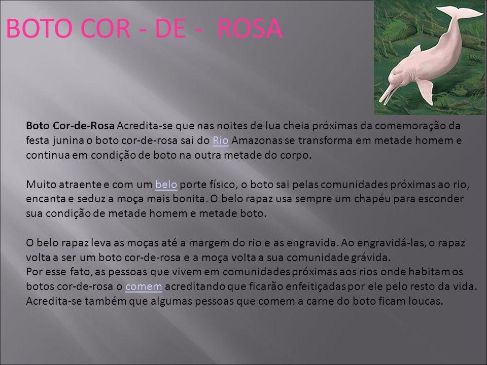 BOTO COR - DE - ROSA Boto Cor-de-Rosa Acredita-se que nas noites de lua cheia próximas da comemoração da festa junina o boto cor-de-rosa sai do Rio Am