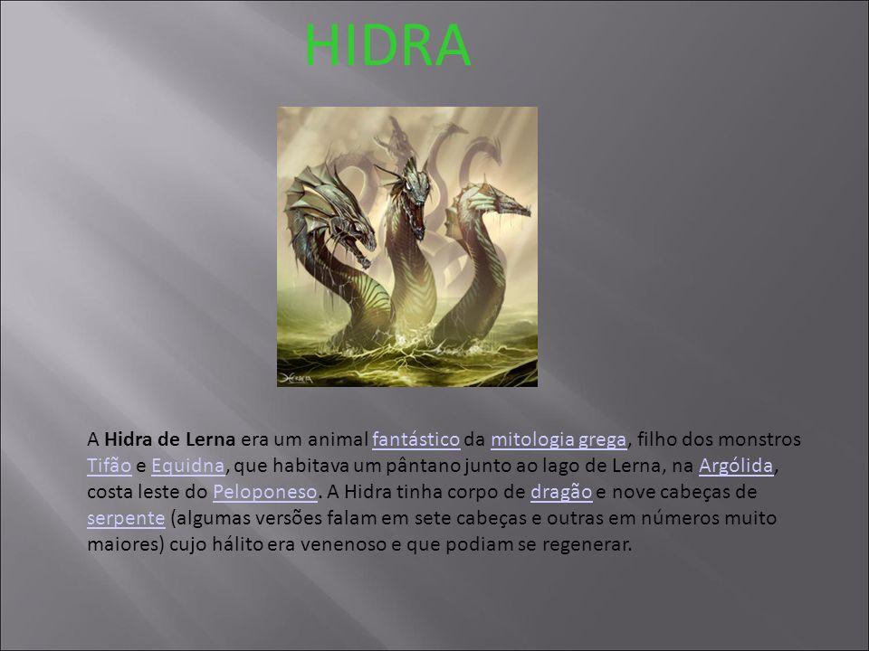 HIDRA A Hidra de Lerna era um animal fantástico da mitologia grega, filho dos monstros Tifão e Equidna, que habitava um pântano junto ao lago de Lerna