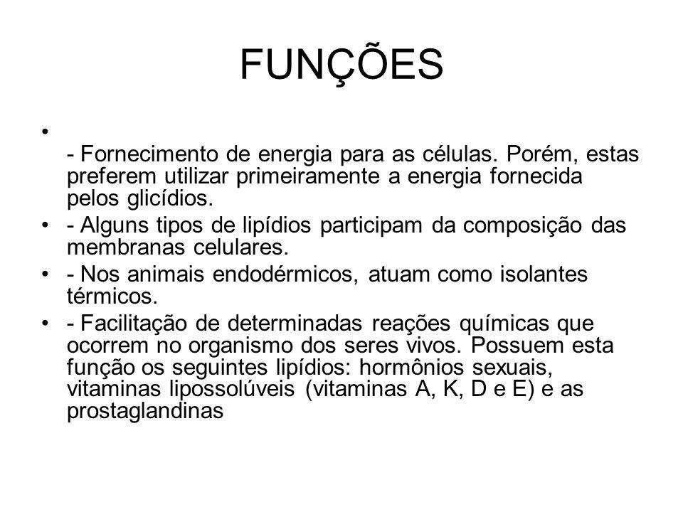 FUNÇÕES - Fornecimento de energia para as células. Porém, estas preferem utilizar primeiramente a energia fornecida pelos glicídios. - Alguns tipos de