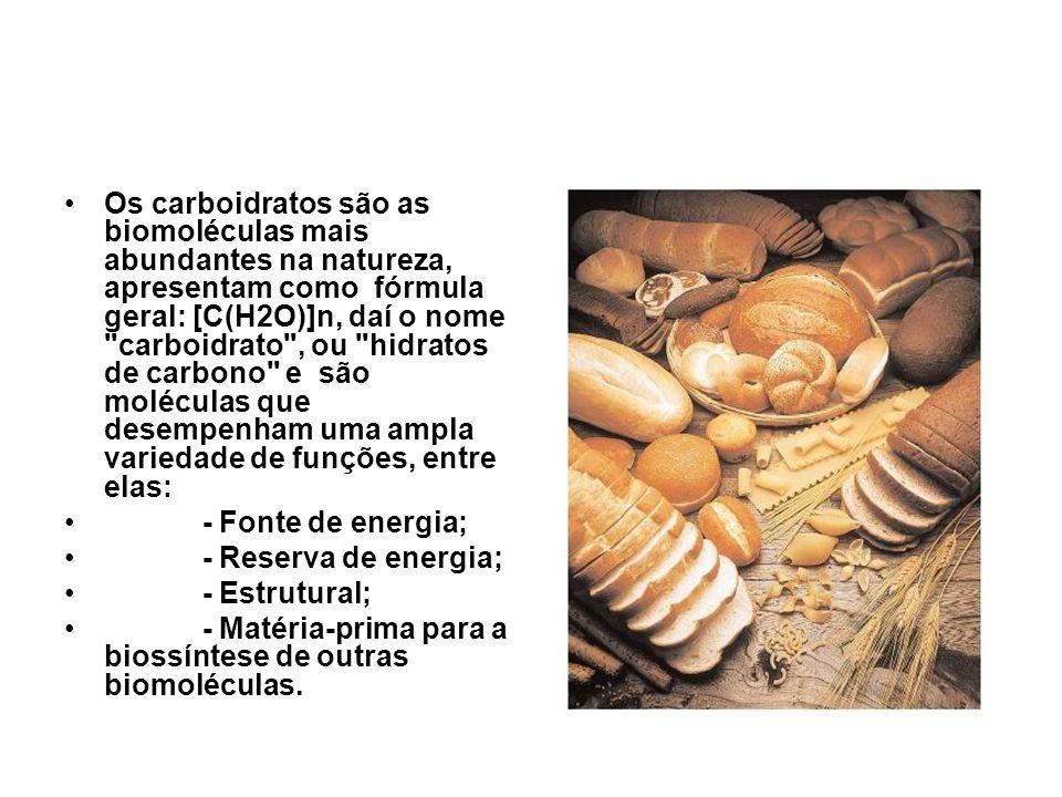 Os carboidratos são as biomoléculas mais abundantes na natureza, apresentam como fórmula geral: [C(H2O)]n, daí o nome