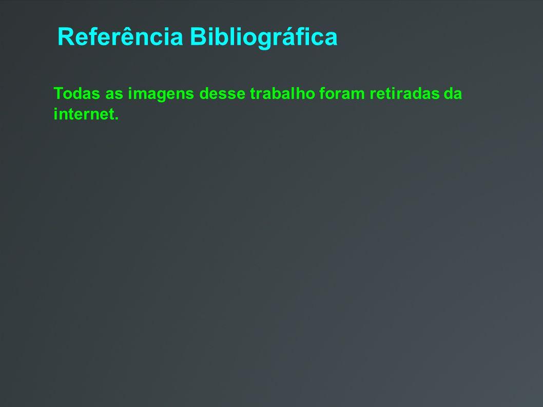 Referência Bibliográfica Todas as imagens desse trabalho foram retiradas da internet.