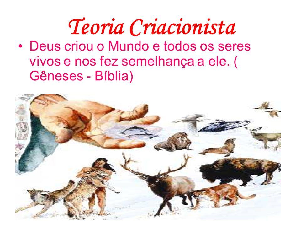 Teoria Criacionista Deus criou o Mundo e todos os seres vivos e nos fez semelhança a ele. ( Gêneses - Bíblia)