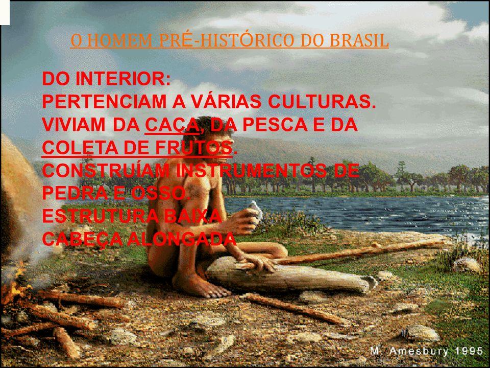 O HOMEM PR É -HIST Ó RICO DO BRASIL DO INTERIOR: PERTENCIAM A VÁRIAS CULTURAS. VIVIAM DA CAÇA, DA PESCA E DA COLETA DE FRUTOS. CONSTRUÍAM INSTRUMENTOS