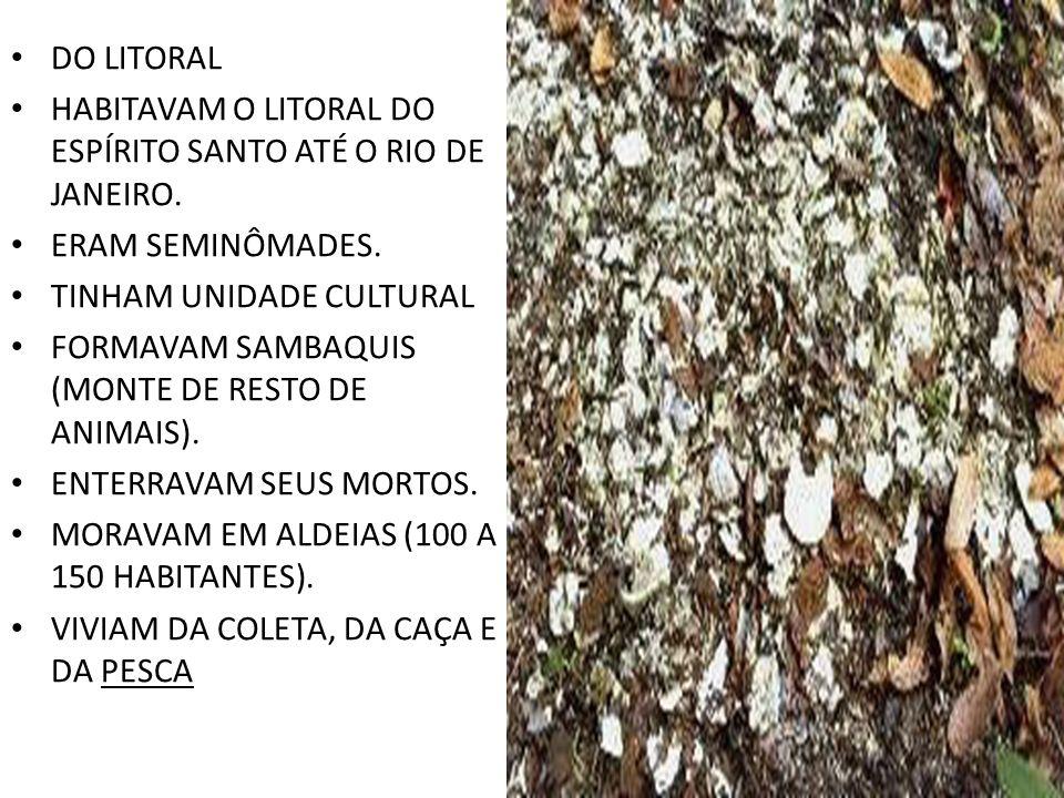 DO LITORAL HABITAVAM O LITORAL DO ESPÍRITO SANTO ATÉ O RIO DE JANEIRO. ERAM SEMINÔMADES. TINHAM UNIDADE CULTURAL FORMAVAM SAMBAQUIS (MONTE DE RESTO DE