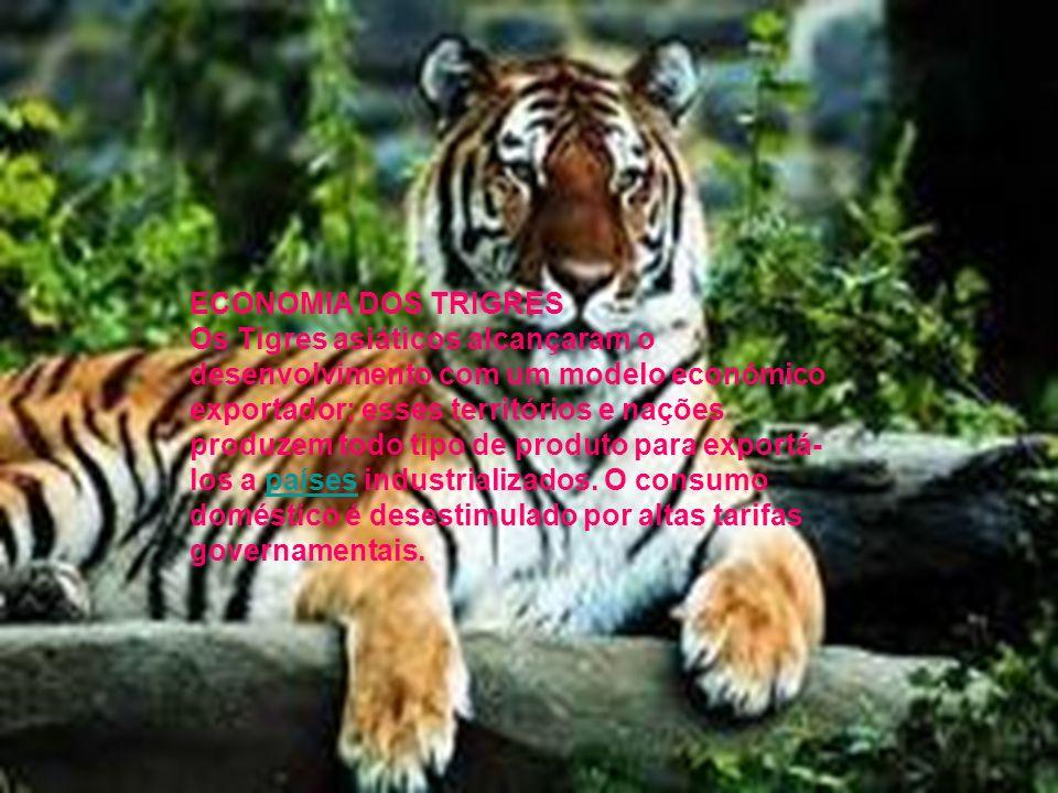 Com o tempo, o termo Tigre tornou-se sinônimo de nação que alcançou o crescimento com um modelo econômico voltado para exportação. Recentemente, naçõe