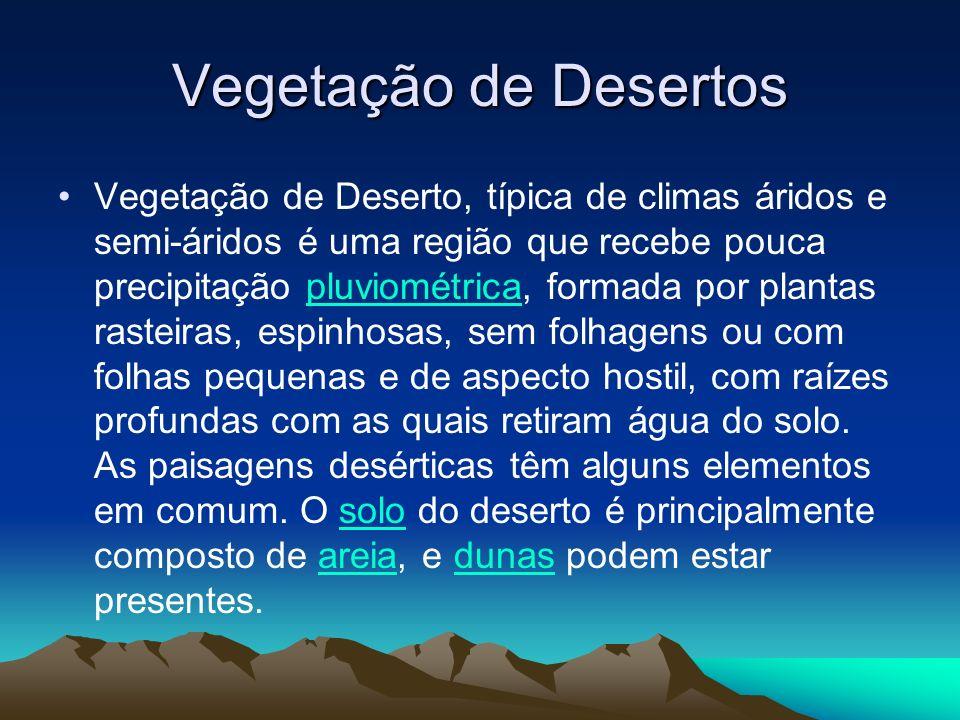 Vegetação de Estepes.