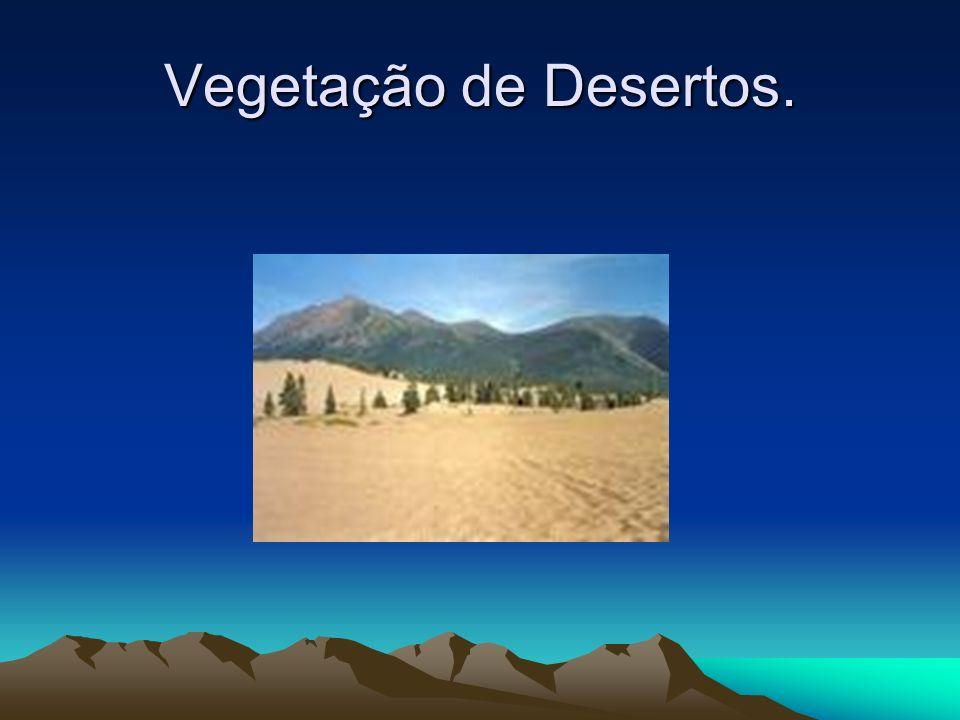 Vegetação de Desertos Vegetação de Deserto, típica de climas áridos e semi-áridos é uma região que recebe pouca precipitação pluviométrica, formada po