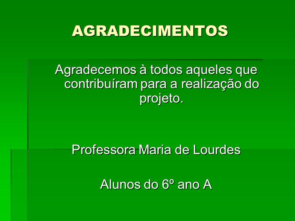 AGRADECIMENTOS Agradecemos à todos aqueles que contribuíram para a realização do projeto. Professora Maria de Lourdes Alunos do 6º ano A