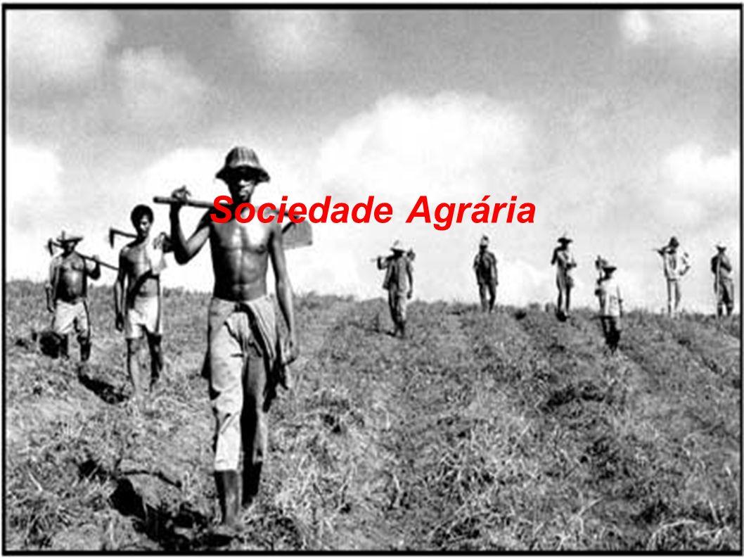 Sociedade Agrária