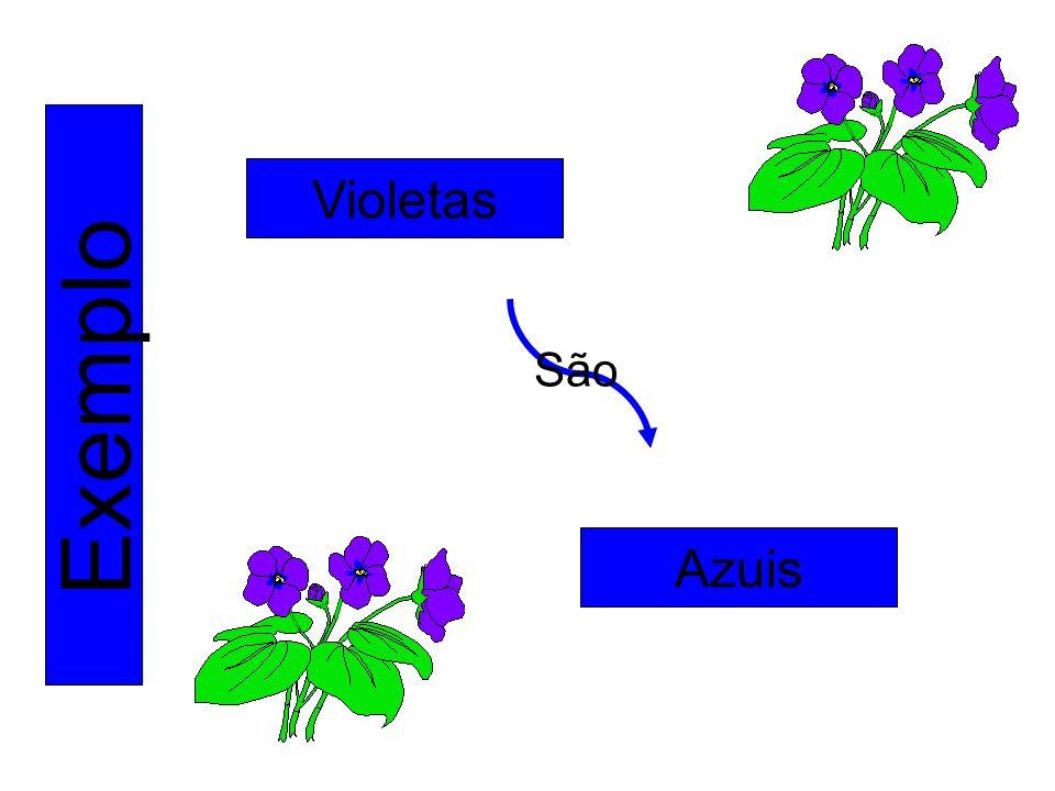 Exemplo Violetas Azuis São
