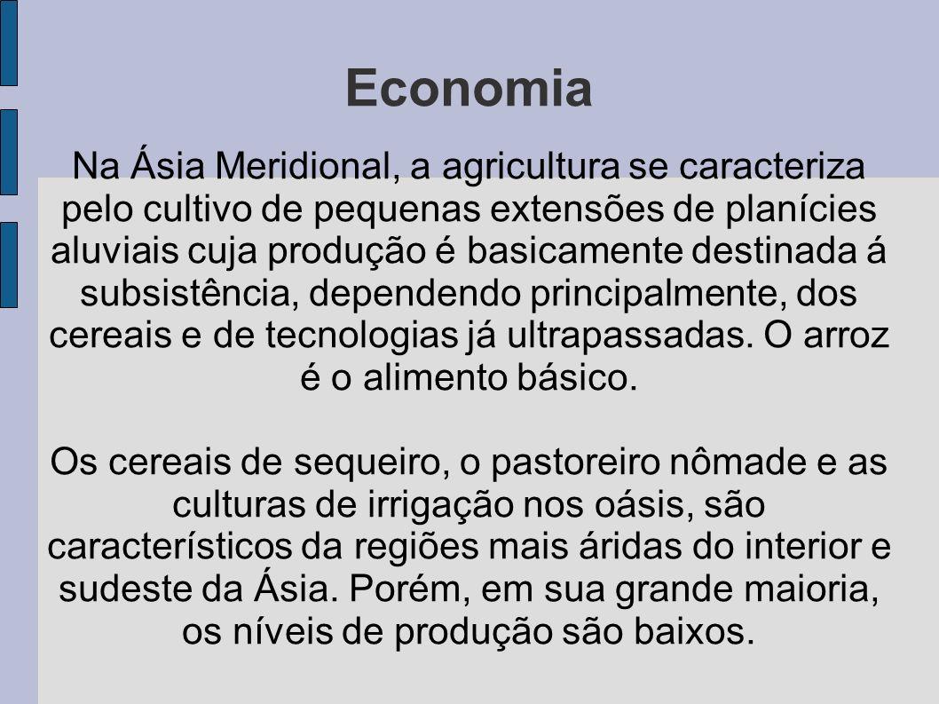 Na Ásia Meridional, a agricultura se caracteriza pelo cultivo de pequenas extensões de planícies aluviais cuja produção é basicamente destinada á subs