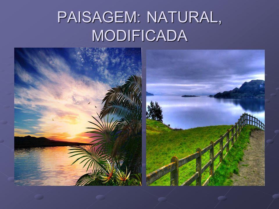 PAISAGEM: NATURAL, MODIFICADA