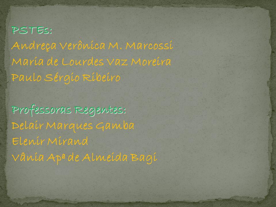 PSTEs: Andreça Verônica M. Marcossi Maria de Lourdes Vaz Moreira Paulo Sérgio Ribeiro Professoras Regentes: Delair Marques Gamba Elenir Mirand Vânia A