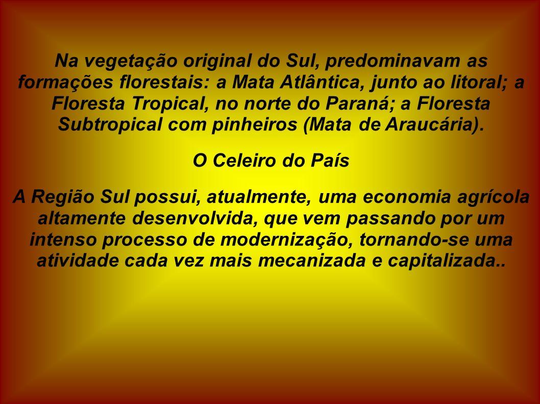 Na vegetação original do Sul, predominavam as formações florestais: a Mata Atlântica, junto ao litoral; a Floresta Tropical, no norte do Paraná; a Flo