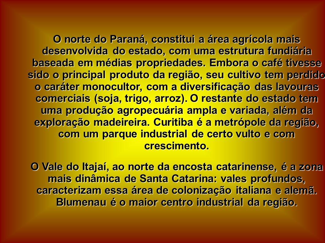 O norte do Paraná, constitui a área agrícola mais desenvolvida do estado, com uma estrutura fundiária baseada em médias propriedades. Embora o café ti