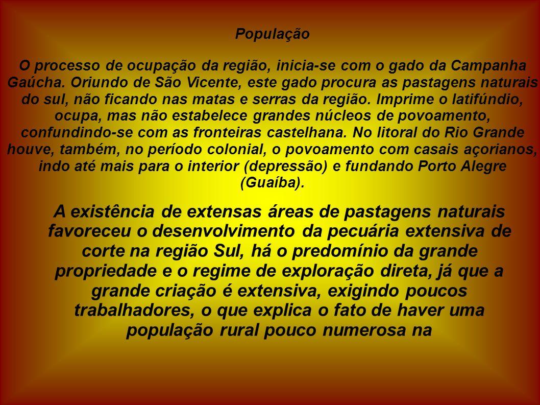 População O processo de ocupação da região, inicia-se com o gado da Campanha Gaúcha. Oriundo de São Vicente, este gado procura as pastagens naturais d