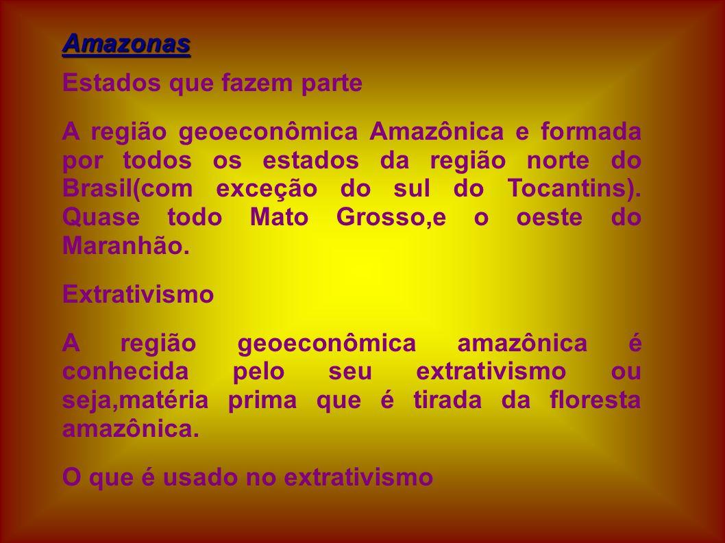 Amazonas Estados que fazem parte A região geoeconômica Amazônica e formada por todos os estados da região norte do Brasil(com exceção do sul do Tocant