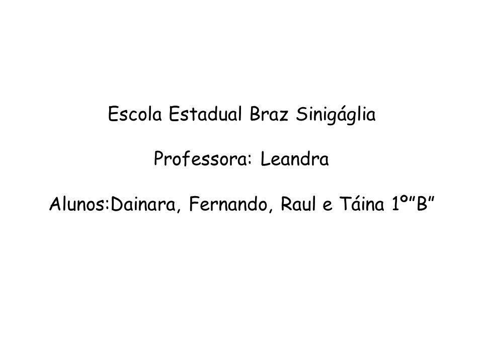 Escola Estadual Braz Sinigáglia Professora: Leandra Alunos:Dainara, Fernando, Raul e Táina 1ºB