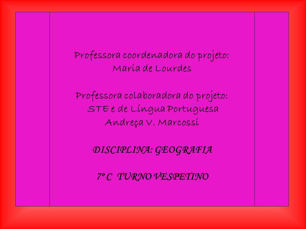 Professora coordenadora do projeto: Maria de Lourdes Professora colaboradora do projeto: STE e de Língua Portuguesa Andreça V.