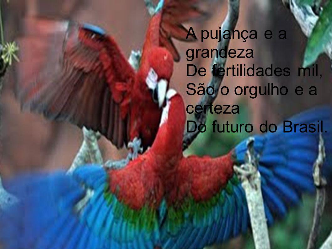 A pujança e a grandeza De fertilidades mil, São o orgulho e a certeza Do futuro do Brasil.