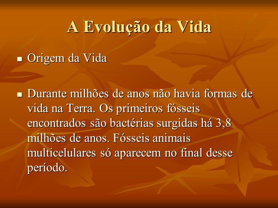 A Evolução da Vida Origem da Vida Origem da Vida Durante milhões de anos não havia formas de vida na Terra. Os primeiros fósseis encontrados são bacté