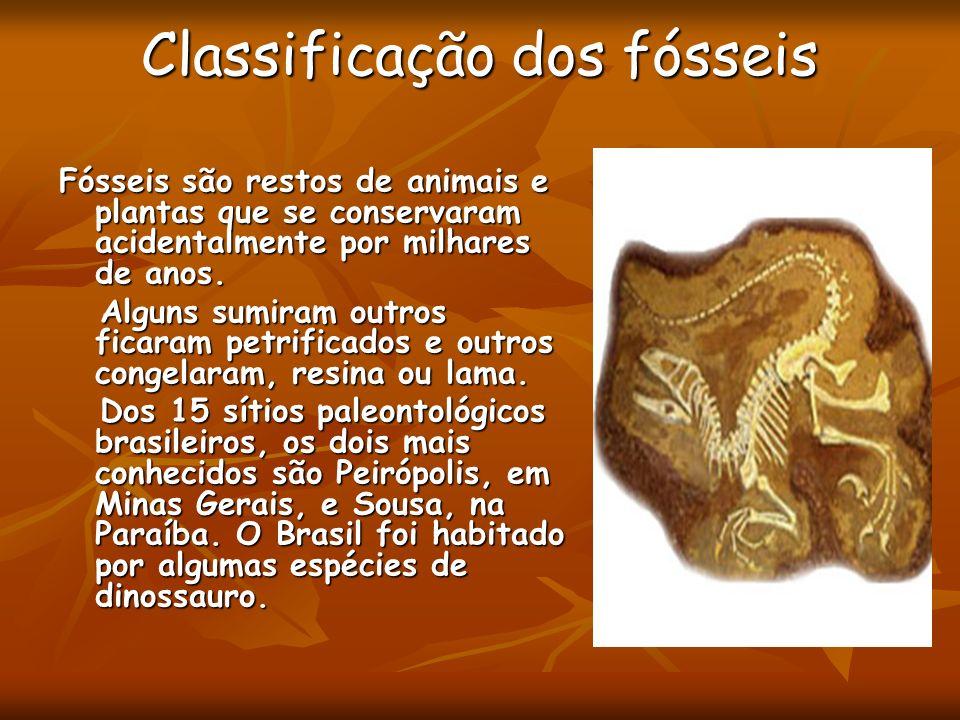 Classificação dos fósseis Fósseis são restos de animais e plantas que se conservaram acidentalmente por milhares de anos. Alguns sumiram outros ficara