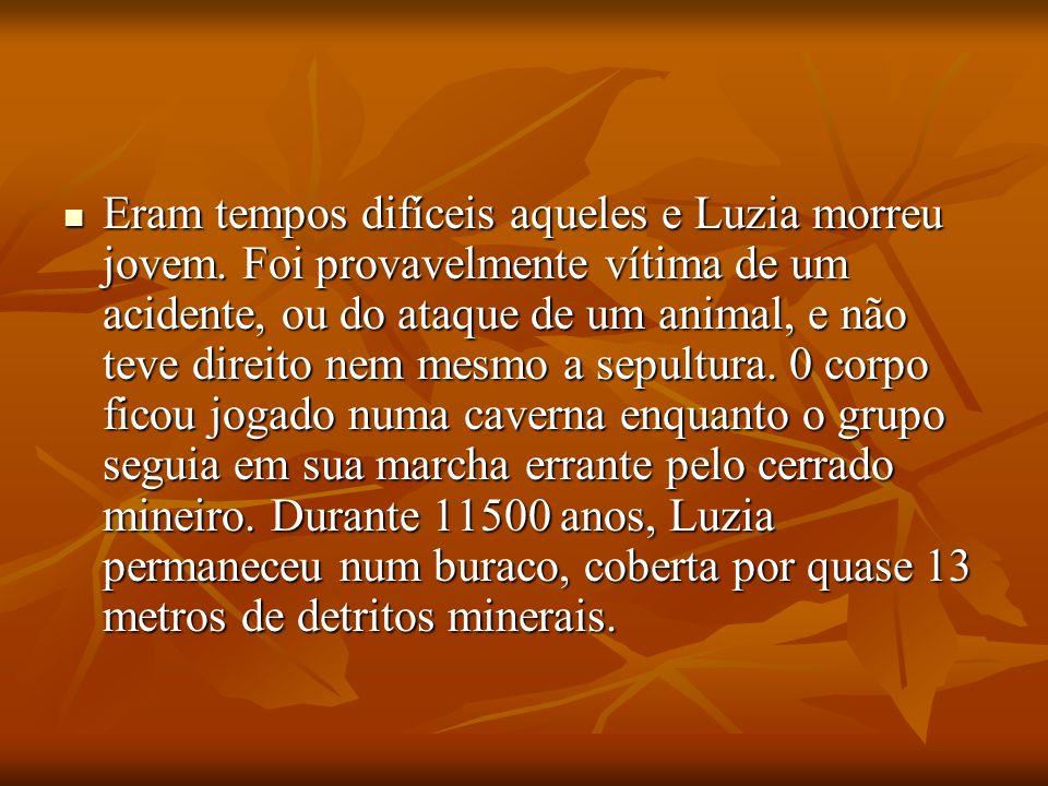 Eram tempos difíceis aqueles e Luzia morreu jovem. Foi provavelmente vítima de um acidente, ou do ataque de um animal, e não teve direito nem mesmo a