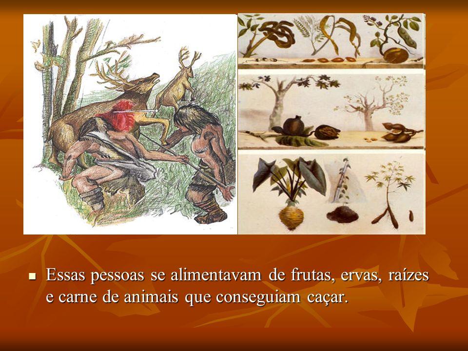 Essas pessoas se alimentavam de frutas, ervas, raízes e carne de animais que conseguiam caçar. Essas pessoas se alimentavam de frutas, ervas, raízes e