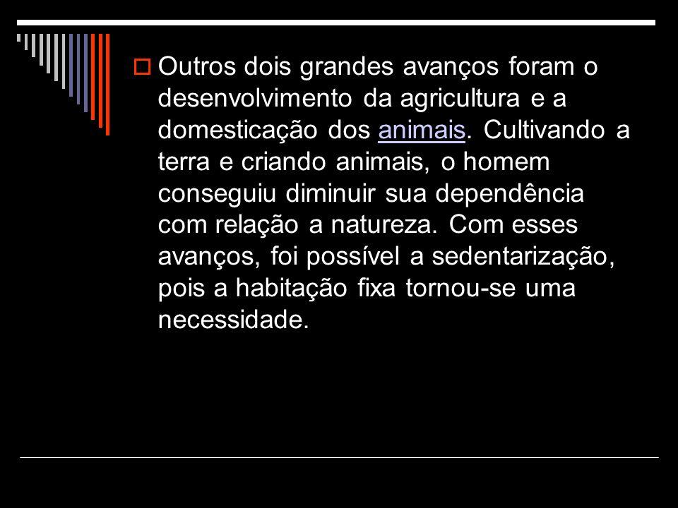 Outros dois grandes avanços foram o desenvolvimento da agricultura e a domesticação dos animais. Cultivando a terra e criando animais, o homem consegu