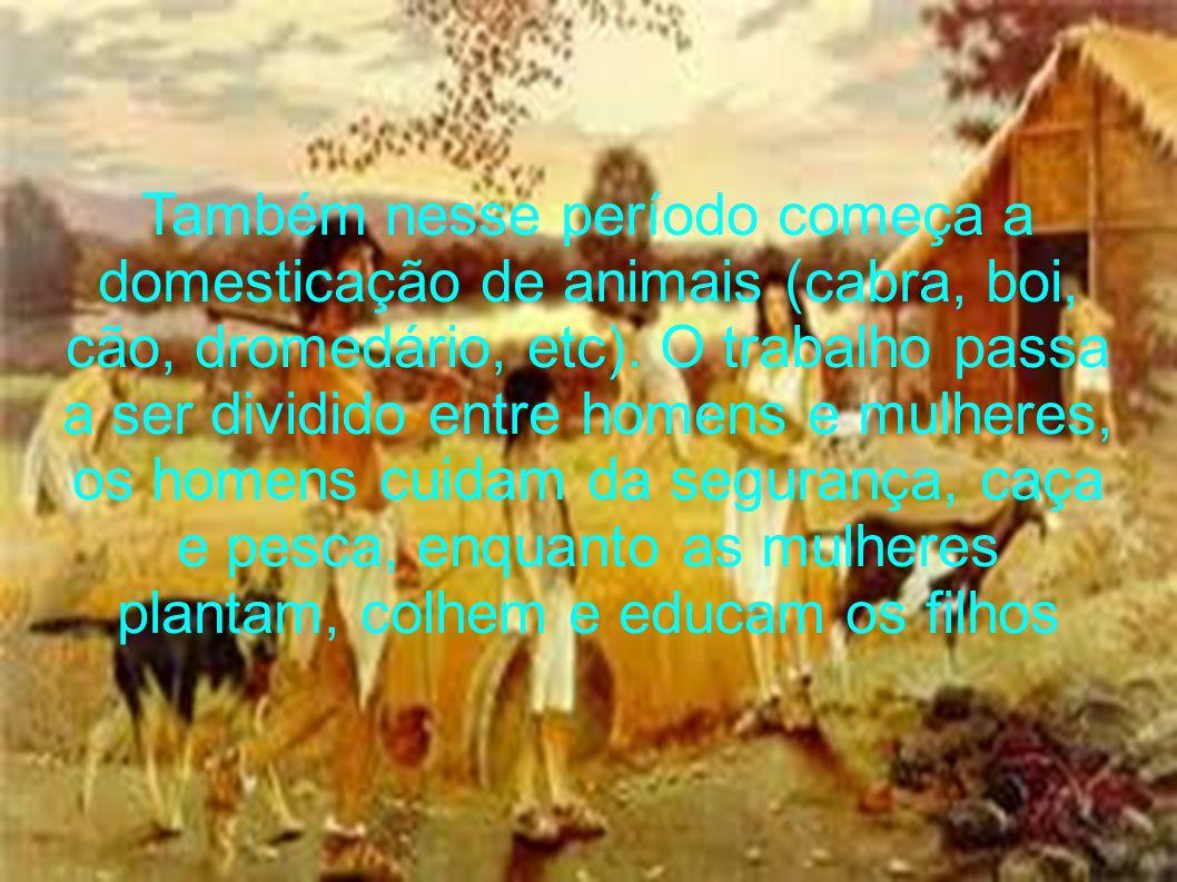 Também nesse período começa a domesticação de animais (cabra, boi, cão, dromedário, etc). O trabalho passa a ser dividido entre homens e mulheres, os