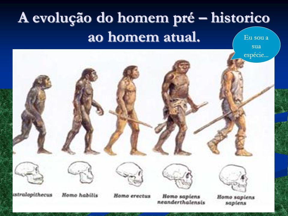 A evolução do homem pré – historico ao homem atual. Eu sou a sua espécie...