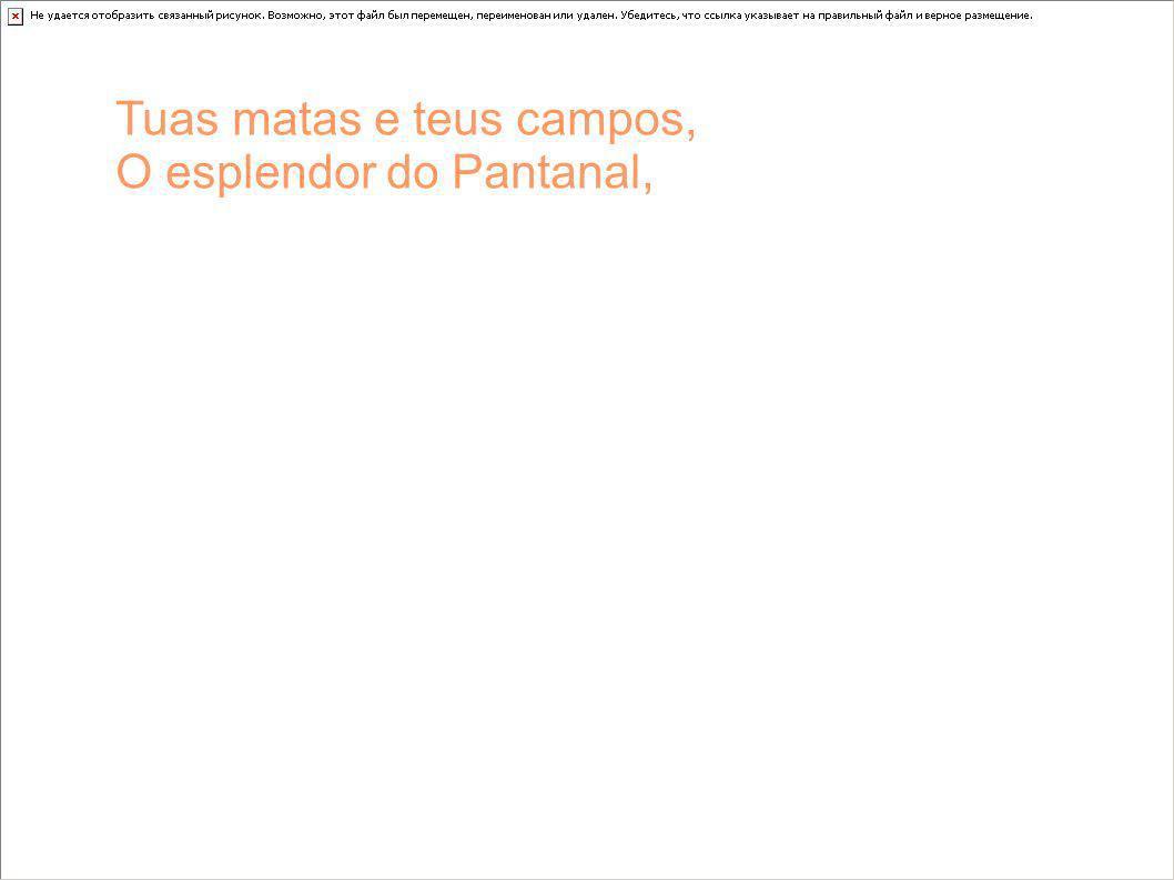 Tuas matas e teus campos, O esplendor do Pantanal,
