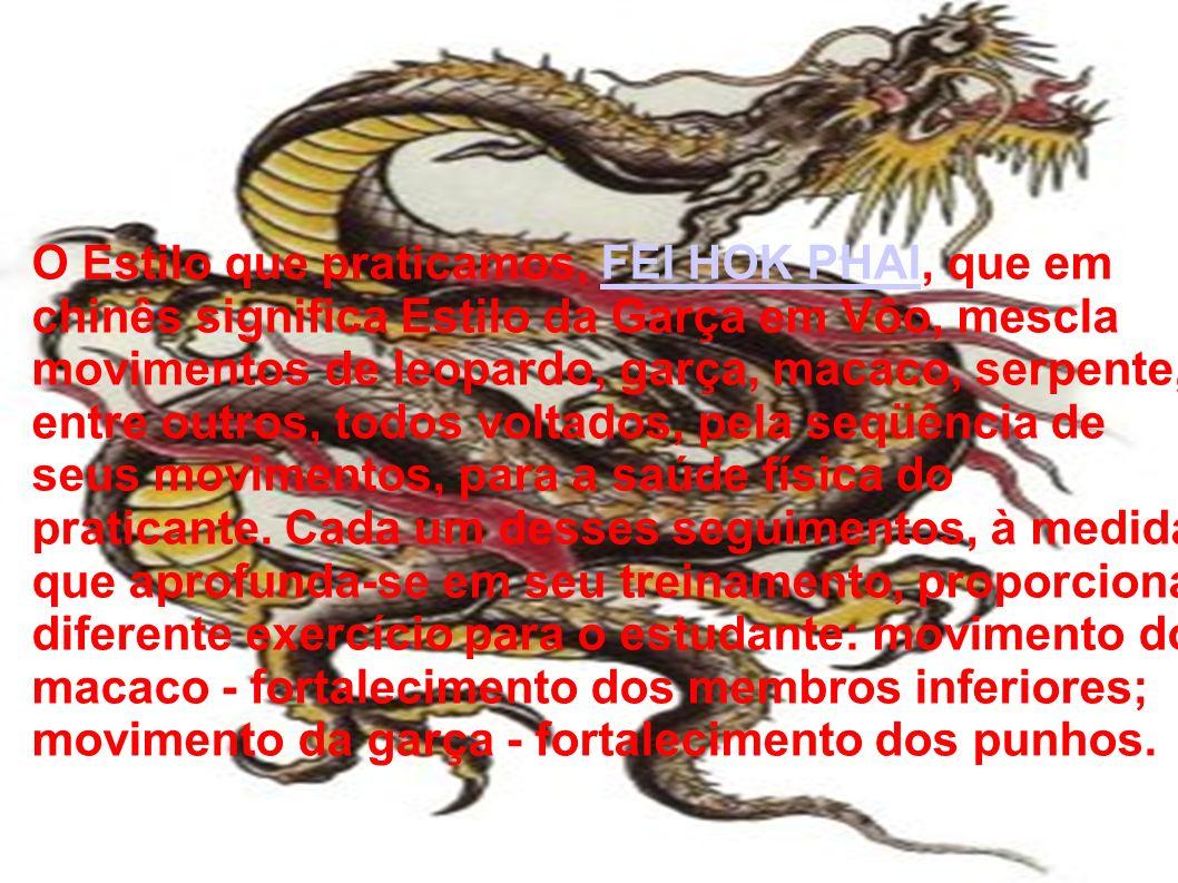 O Estilo que praticamos, FEI HOK PHAI, que em chinês significa Estilo da Garça em Vôo, mescla movimentos de leopardo, garça, macaco, serpente, entre o