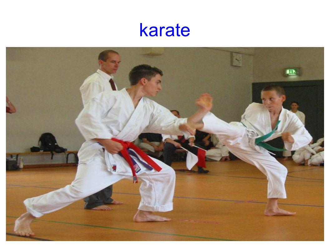 BRIGAS Briga-é uma luta sem nenhu tipo de pontuação e total fora da etica das arte marcias