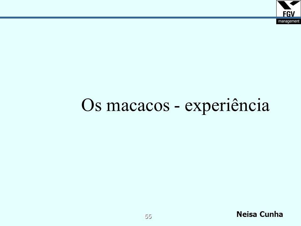 Neisa Cunha 54 Transparência das Formas de Pensar Liderança Integrativa e a Aprendizagem Contínua Peter Senge Liderança Compartilhada