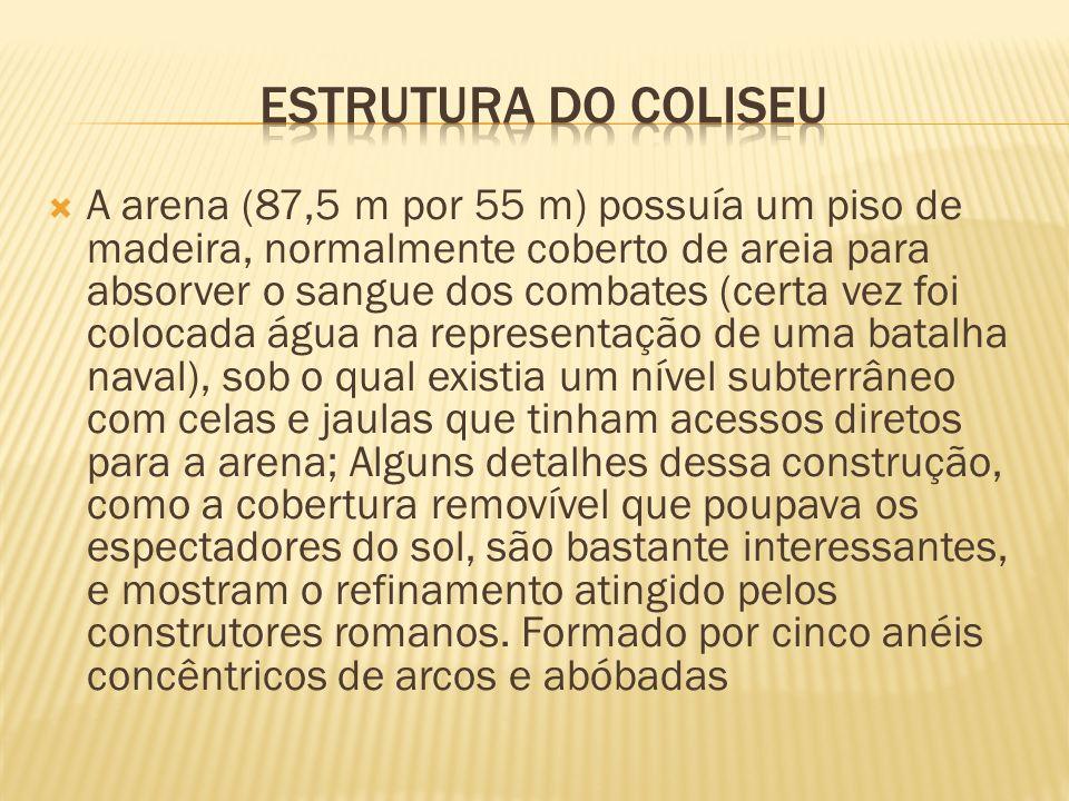 A arena (87,5 m por 55 m) possuía um piso de madeira, normalmente coberto de areia para absorver o sangue dos combates (certa vez foi colocada água na