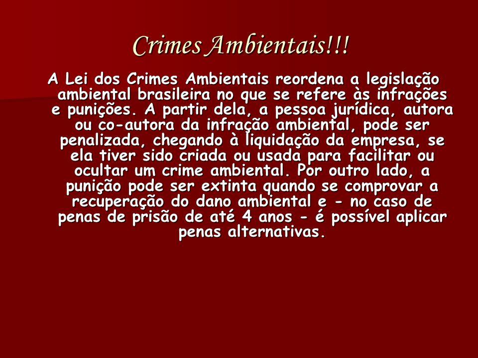 Crimes Ambientais!!! A Lei dos Crimes Ambientais reordena a legislação ambiental brasileira no que se refere às infrações e punições. A partir dela, a