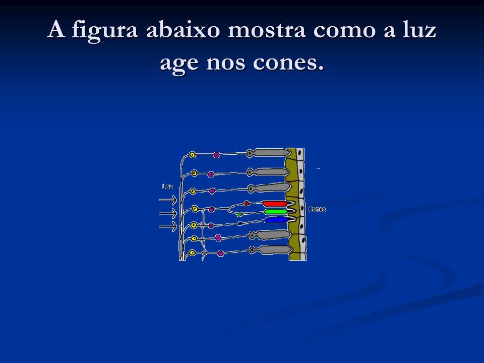 A figura abaixo mostra como a luz age nos cones.