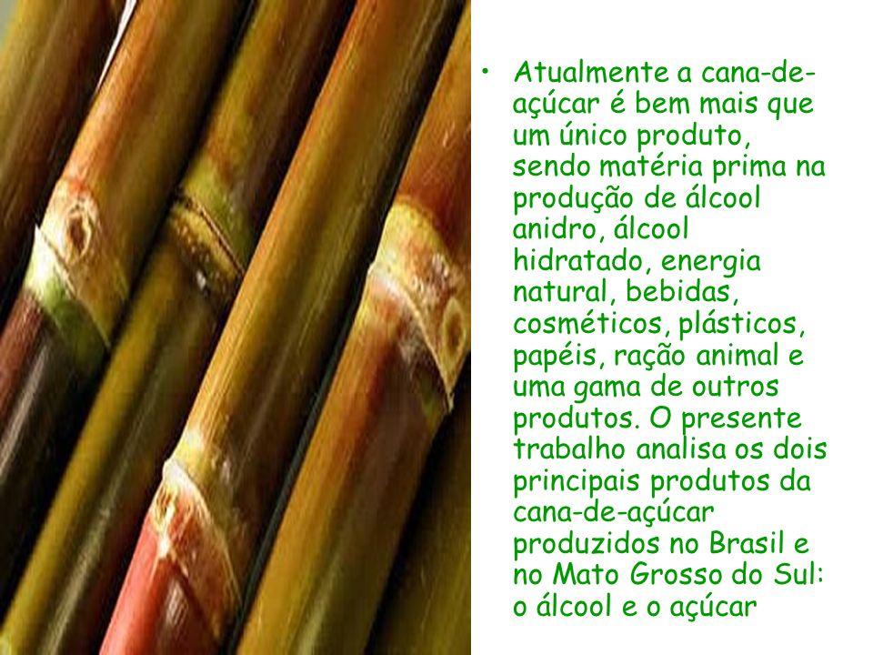 Atualmente a cana-de- açúcar é bem mais que um único produto, sendo matéria prima na produção de álcool anidro, álcool hidratado, energia natural, beb