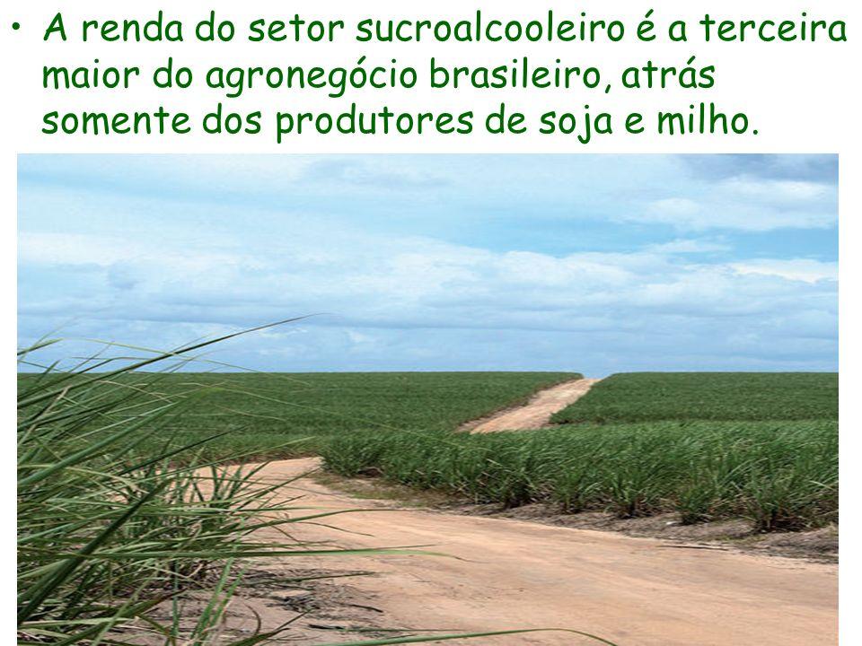 A renda do setor sucroalcooleiro é a terceira maior do agronegócio brasileiro, atrás somente dos produtores de soja e milho.
