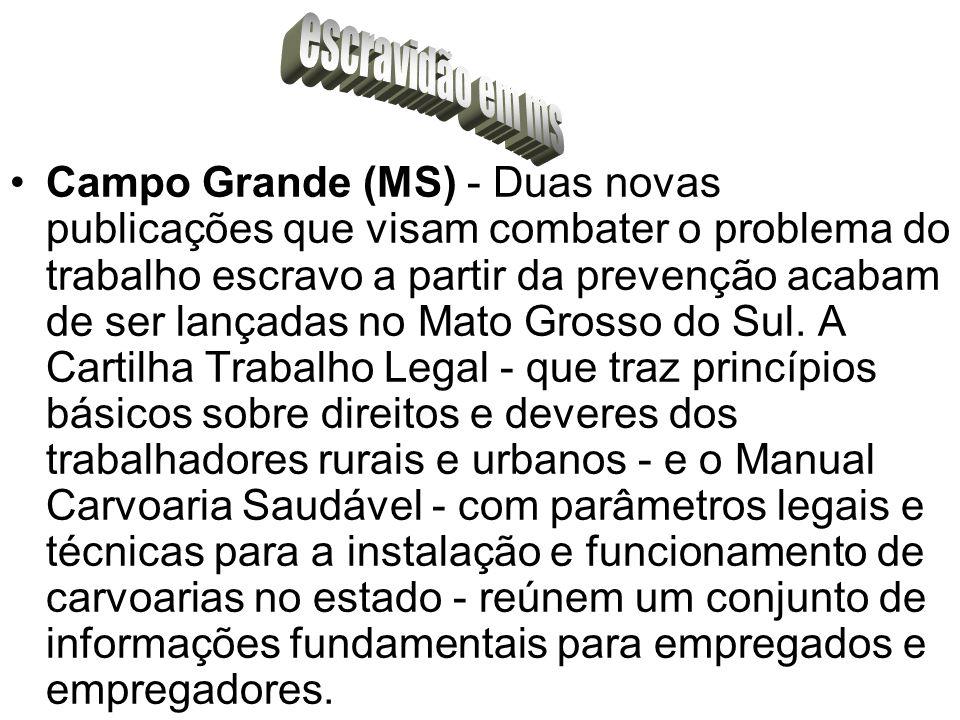 O mercado físico brasileiro de boi esteve em forte movimento de baixa em fevereiro.